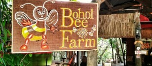 Bohol Adventure: Bohol Bee Farm